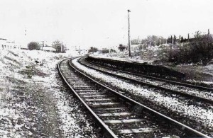halt_1980