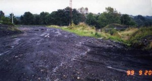 iine_to_taff_dug_up