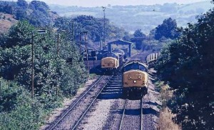 nelson_coal_trains