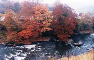 river_21