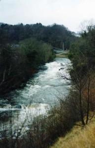 river_8
