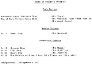 shops_in_trelewis_part_two